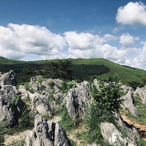持続的な地域観光振興に向けたファーストステップ──秋吉台地域景観・施設整備基本計画
